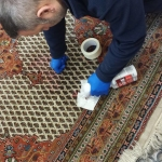 UK Carpet Care - Rug Cleaning in Suffolk -4